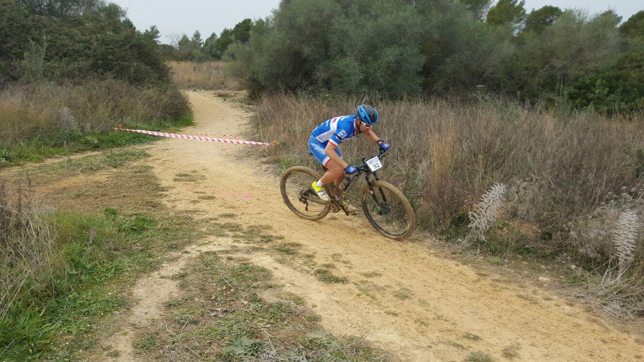 Josep Coll Marratxi